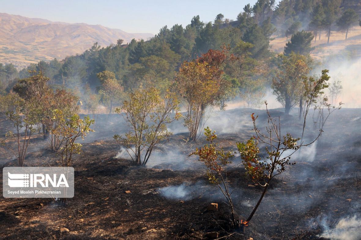 خبرنگاران آتش سوزی در ارتفاعات گچساران ادامه دارد